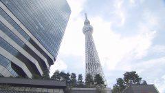 東京の人気観光スポットTOP3&食べなきゃ損グルメ