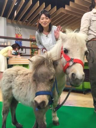 恩田と親子馬