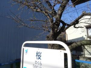 2014_03_22養老鉄道_1