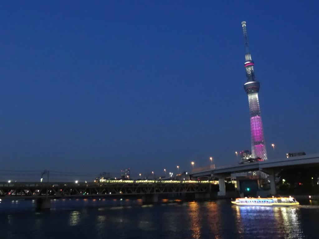 東京スカイツリー 7 東京スカイツリーの夜景 中京テレビ 稲見