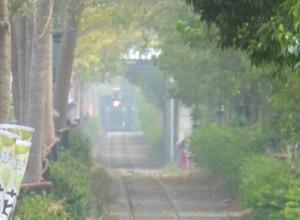 2014_11_30 台湾・集集線トリミング