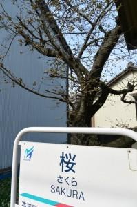 2015_03_21 瀬戸電&瀬戸蔵ロボット博_1