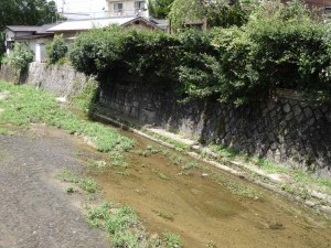 2015_07_25 大仏鉄道_162
