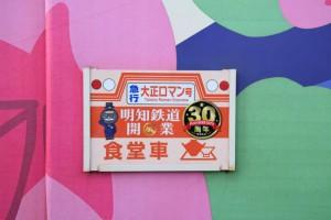2015_10_24 明知鉄道きのこ列車_55