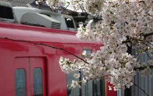 2016_04_02 桜駅の桜_9