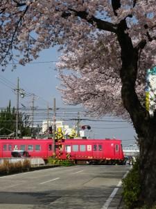 2016_04_02 桜駅の桜_3