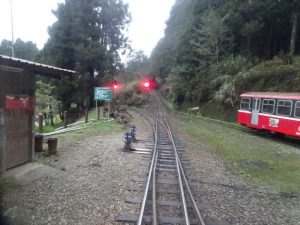 2016_03_23-1 阿里山森林鉄道祝山線_74