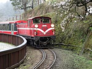 2016_03_22 阿里山森林鉄道_165
