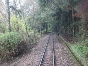 2016_03_22 阿里山森林鉄道_152