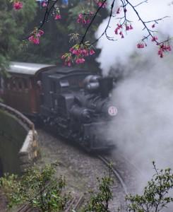 2016_03_23-2 シェイ式蒸気機関車_62