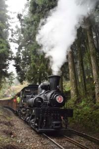 2016_03_23-2 シェイ式蒸気機関車_67