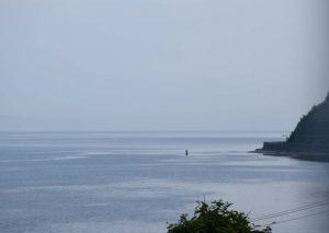 2016_06_11 ながまれ海峡号_78