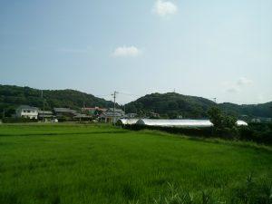 2016_08_06 遠州鉄道_4