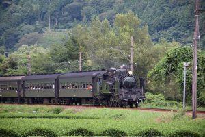 2016_08_06 大井川鐡道 撮り鉄_57