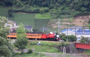2016_08_06 大井川鐡道 撮り鉄_31