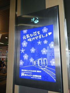 2016_09_11 瀬戸大橋塔頂体験&〕クルーズ_2